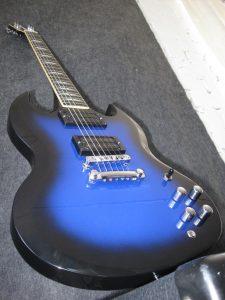 blsg005